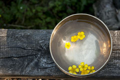 Tibetan bowl with flowers Royalty Free Stock Image