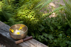 Tibetan bowl or singing bowl with flowers Stock Photos