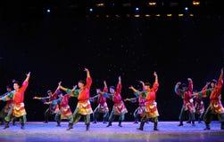 Tibetan Boy Dance-The campus show Stock Images
