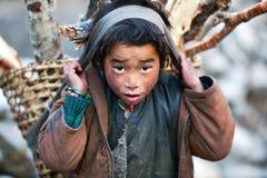 Tibetan boy, Nepal. LHO, GORKHA, NEPAL - NOVEMBER 29: Tibetan boy  with basket of firewood poses for a photo on the road to Lho village on November 29, 2009 in Royalty Free Stock Photography