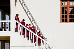 Tibetan boys, novice Buddhist monks. India Royalty Free Stock Image