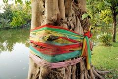 Tibetan Buddhist prayer flags around tree Stock Images