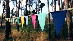 Tibetan buddhist prayer flags blowing in the wind. Sunrise at Himalayan foothills in India as a background stock footage