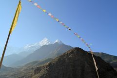 Tibetan Buddhist prayer flags in the himalayas Royalty Free Stock Image