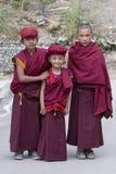 Tibetan Buddhist young monk in Hemis monastery, Ladakh, North India Stock Images