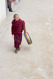 Tibetan Buddhist young monk in the monastery of Lamayuru, Ladakh, India Stock Images