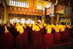 Tibetan buddistisk ceremoni, Gyuto kloster, Dharamshala, Indien royaltyfri bild