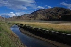 Tibetan  countryside. Farm in Shigatse, tibet Royalty Free Stock Photos