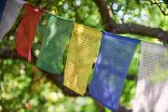 Tibetan flags closeup. Multicolored tibetan flags in the park closeup Stock Images