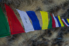 Tibetan Flags at Tharpu Chuli Base Camp Stock Photo