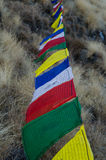 Tibetan Flags at Tharpu Chuli,Nepal Royalty Free Stock Image