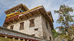 A tibetan folk house. With a tall tree nearby Stock Photography