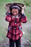 Tibetan girl Stock Photos