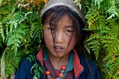 Tibetan girl from Dolpo, Nepal Stock Photos