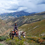 Tibetan girl Stock Image