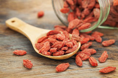 Tibetan goji berries Stock Photo