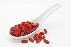 Tibetan goji berry Royalty Free Stock Photography