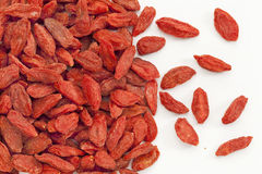 Tibetan goji berry background Stock Image