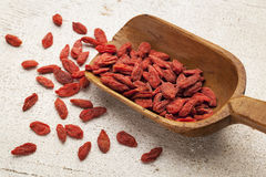 Tibetan goji berry scoop Royalty Free Stock Photos