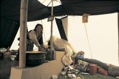 Tibetan herdsman Arkivbilder