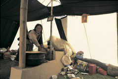 Tibetan herdsman Stock Images