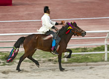 Tibetan Horse Racing Royalty Free Stock Image