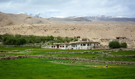 Tibetan houses at small village in Leh, India Royalty Free Stock Image