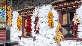 Tibetan hung on the wall of corn and peppers Royalty Free Stock Photo