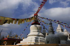 Tibetan Image Stock Photography