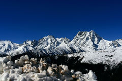 Tibetan jokul Stock Image
