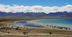 tibetan lake Royaltyfri Fotografi