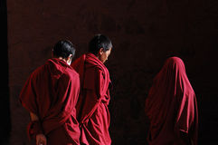 Free Tibetan Lamas Royalty Free Stock Photo - 11502815
