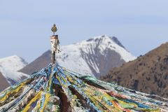 Tibetan landscape in China with prayer flags on foreground and mountains on background Stock Photos