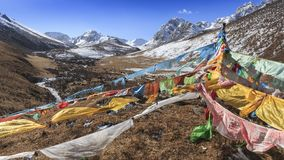 Tibetan landscape in China with prayer flags on foreground and mountains and yaks on background Royalty Free Stock Photos
