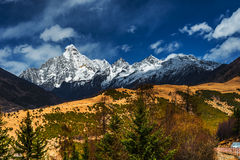 The Tibetan landscape Royalty Free Stock Images