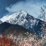 The Tibetan landscape Stock Photos