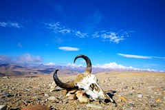 Tibetan landscape Stock Photo