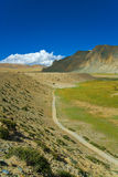 tibetan liggande arkivfoton