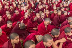 Tibetan ludzie i obrazy royalty free