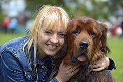 Tibetan Mastiff Stock Images
