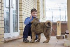 Tibetan mastiff för pojke och för valp arkivfoton