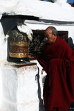 tibetan monk Royaltyfria Bilder