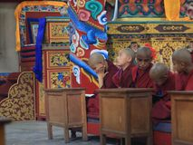 Tibetan monk in prayer. New young Tibetan monk in prayer in the temple Royalty Free Stock Photography