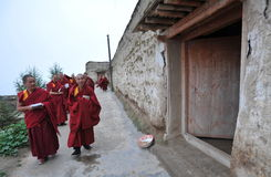 Tibetan monks. Going to the near  Shacun monastery for prayer Royalty Free Stock Image