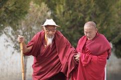 Tibetan monks royalty free stock photography