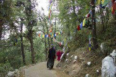 A Tibetan monks in the forest on the path stock photos