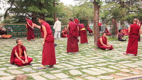 Tibetan Monks Practice of Discussions. McLeod Ganj, India - April, 2016: Tibetan monks traditionally use special `practice of discussions` in Tsuglagkhang temple stock video footage