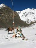 Tibetan Mountain Top. Reaching the summit on horseback royalty free stock photo