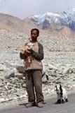 Tibetan nomad, Ladakh Arkivfoto