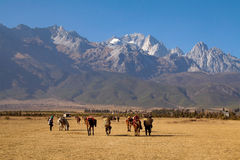 Tibetan nomads Stock Images